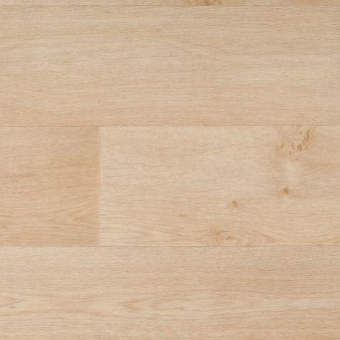 Timber Blond