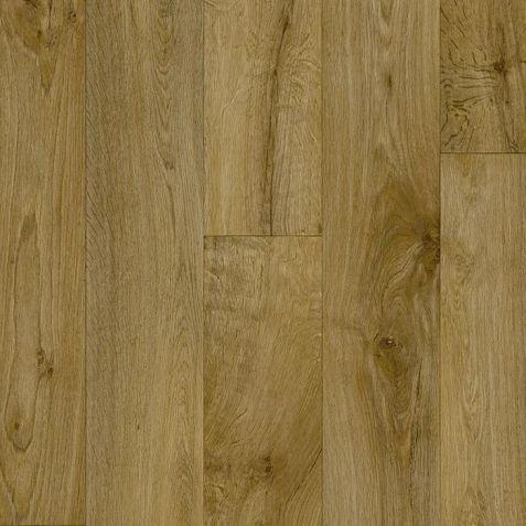 Willow Oak 636M