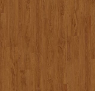 Brownie 0459