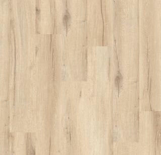 Cedar Pure 0849
