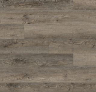 Aeolus Oak K415