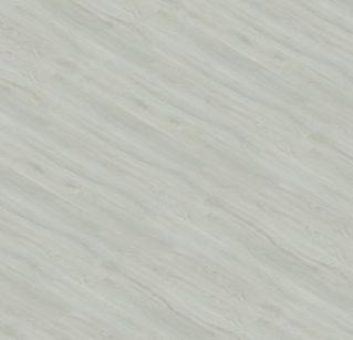 Dub Popelavý 12146-1