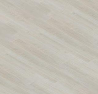 Topol Bílý 12144-1