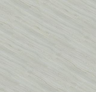 Dub popelavý 30146-1