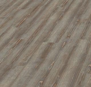 5979 Grey Pine