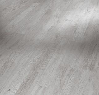 Dub stříbrný 1518079